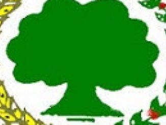 ጥያቄ ታሪክ የሲዳማ Kora ነጋሶ Nagaasoo Qabsoo Ummata WBO Yakka Bulchiinsaa ነጻነት ግመል Ajjeechaa Gama Tarkaanfiin ABO Qabeenya Shanee Mirga